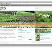 Casey's Nursery Website