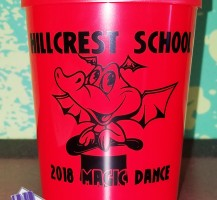 Marion County Schools – Hillcrest Dragon Cups