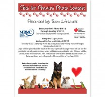 Munroe Regional Pets for Pennies Flyer