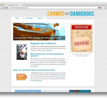 Carmed and Dangerous Website