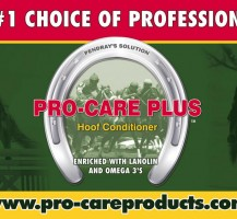 Pro Care Plus Billboard