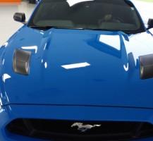 Mustang Highlight