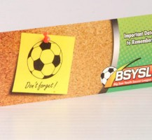Big Sun Youth Soccer Postcards