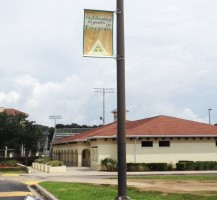 TCHS Avenue Banners