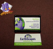 Earthscapes Business Cards