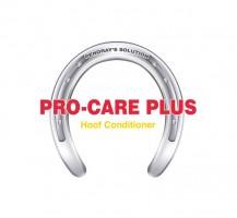 Pro Care Plus Logo Design