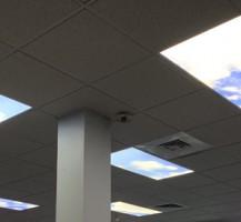 OPD Skylights
