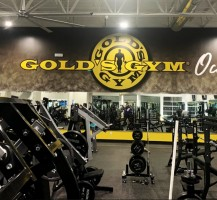 Gold's Gym Wall Graphics