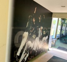 Trinity Catholic High School Dugout Hall Wall Graphics