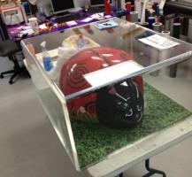 Ladybug Acrylic Box Fabrication